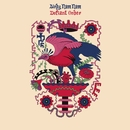 Defiant Order EP/Birdy Nam Nam