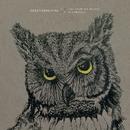 Wasteland (Live From The Woods)/NEEDTOBREATHE
