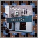 Harmacy/Sebadoh