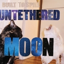 Untethered Moon/Built To Spill