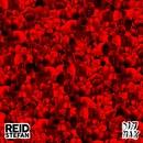 Booty Alert (Original Mix)/Reid Stefan
