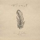 Box Of Feathers/Fismoll