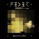 Goodbye (feat. Lyse) [Wolfskind Remix]/Feder