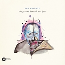 the ground beneath our feet/The Knights