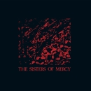 No Time to Cry - EP/The Sisters Of Mercy