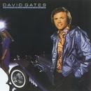 Falling In Love Again/David Gates