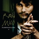 Flamenco En La Piel/Raul Mico