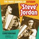 "The Many Sounds Of Steve Jordan/Esteban ""Steve"" Jordan"
