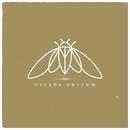 In The Garden/Cicada Rhythm