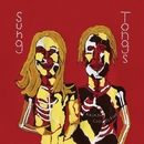 Sung Tongs/Animal Collective