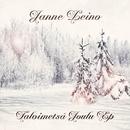 Talvimetsä - Joulu EP/Janne Leino