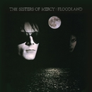 Floodland/The Sisters Of Mercy