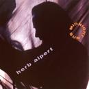 Midnight Sun/Herb Alpert
