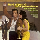 What Now My Love/Herb Alpert & The Tijuana Brass