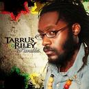Parables/Tarrus Riley