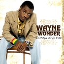 Gonna Love You/Wayne Wonder