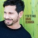 Y si te vas/David Demaria