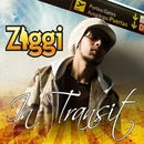 In Transit/Ziggi