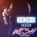 Wesh (#TuMeDisDesWesh) [feat. Gradur]/Mokobé