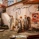 Cinegirasol/Os Azeitonas