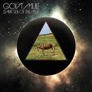 Dark Side Of The Mule/Gov't Mule