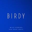 Wild Horses (Sam Feldt Remix)/Birdy