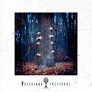 Treehouse/I See Stars