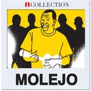 Molejo - iCollection/Grupo Molejo