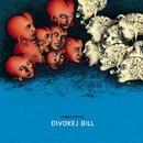 Pocit/Bill Divokej