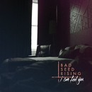 I Can Feel You/Bad Seed Rising