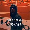 #Eroina / Sub Pielea Mea (Midi Culture Remix)/Carla's Dreams