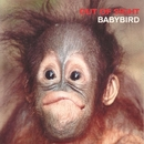 Out of Sight/Babybird