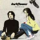 Feed My Soul/Dark Flower