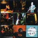 Village Gorilla Head/Tommy Stinson