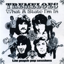 What a State I'm In: The Psych-Pop Sessions/The Tremeloes