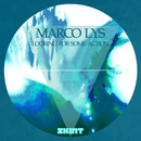 Looking for Some Action/Marco Lys