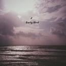 Early Bird/Loptimist