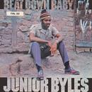 Beat Down Babylon/Junior Byles