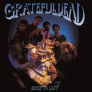 Built To Last/Grateful Dead