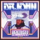 Desitively Bonnaroo/Dr John