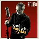 Soul, Bulería y más/Pitingo
