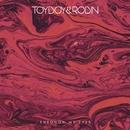 Through My Eyes/Toyboy & Robin