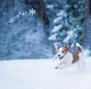 まるごと!冬 -Winter-/Various Artists