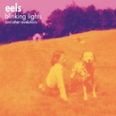 Blinking Lights and Other Revelations/Eels
