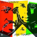 Sly & Robbie: The Summit/Sly & Robbie