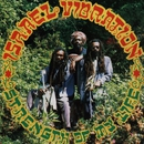 Strength of My Life/Israel Vibration