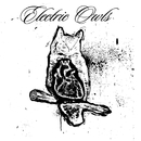 Magic Show EP/Electric Owls