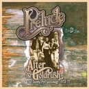 After the Gold Rush: The Dawn/Pye Anthology 1973-77/Prelude