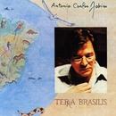 Terra Brasilis/アントニオ・カルロス・ジョビン