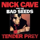 The Mercy Seat/Nick Cave & The Bad Seeds